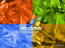 windows-035-01.jpg
