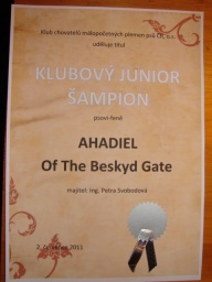"<p><font color=""#ffffff"" size=""2"" face=""Comic Sans MS"">Klubový junioršampion KCHMPP</font></p>"